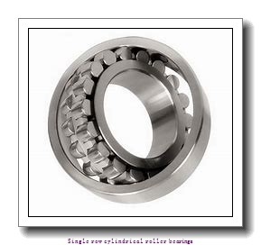 95 mm x 170 mm x 43 mm  NTN NU2219G1C3 Single row cylindrical roller bearings