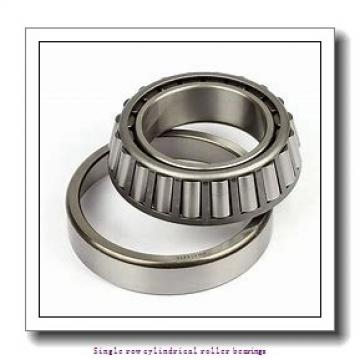 85 mm x 150 mm x 36 mm  NTN NU2217ET2XC3 Single row cylindrical roller bearings
