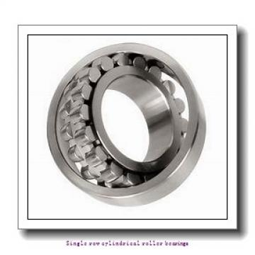 95 mm x 170 mm x 43 mm  NTN NU2219 Single row cylindrical roller bearings
