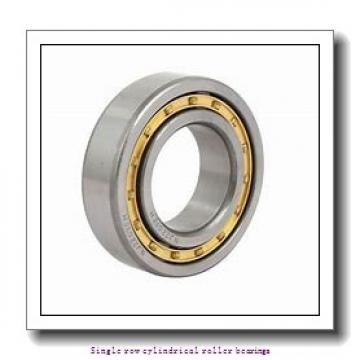 85 mm x 150 mm x 36 mm  NTN NU2217ET2C3 Single row cylindrical roller bearings